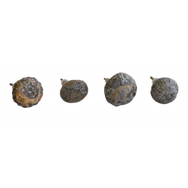 Petrified Sea Urchin Knobs